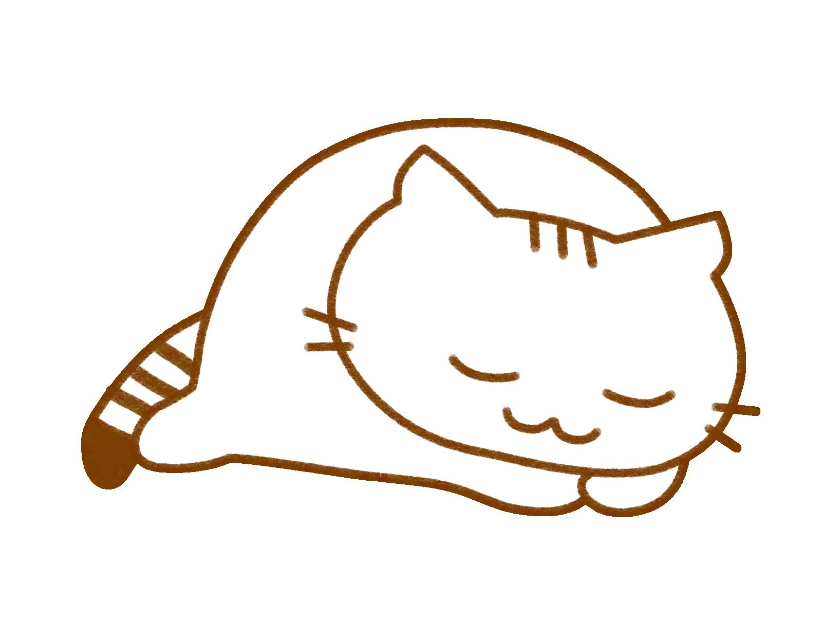 まったり猫